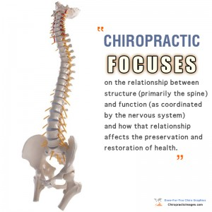 Chiropractic Focuses